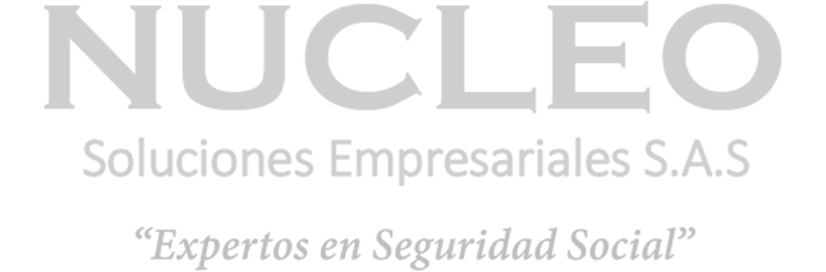 NUCLEO SOLUCION EMPRESARIAL S.A.S